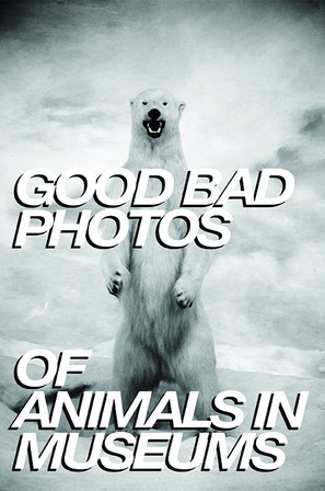 Good Bad Photos of Animals in Museums