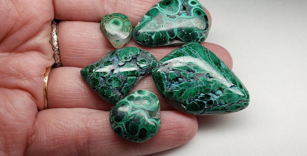Orbicular Azurite Malachite Pre-Forms LOT