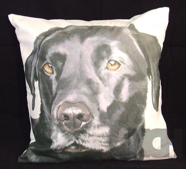 Black Lab Scatter Cushion