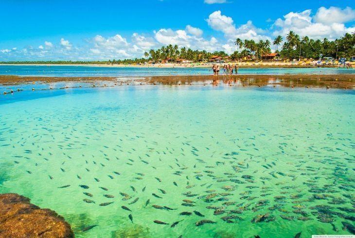 piscinas-naturais-brasil-9-730x489.jpg