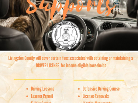 Driver License Support Program