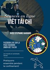 Séances_Viet_Tai_chi_en_ligne.png