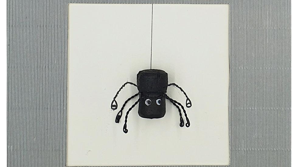 spider versus cider
