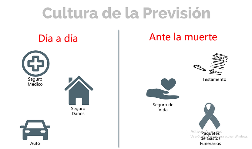 CULTURA PREVISIÓN.png