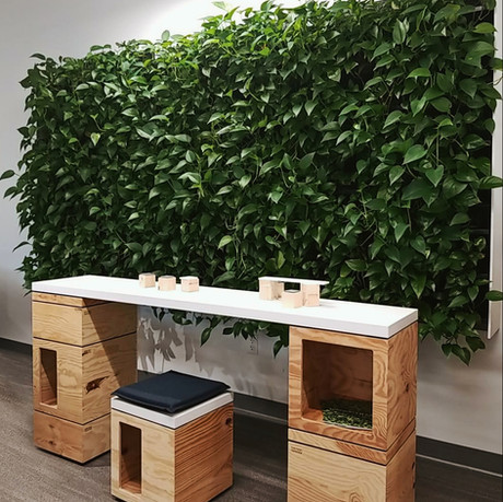 3 Easy Ways for Your Workplace to Go Green