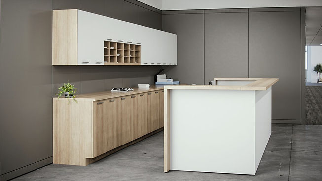 Low-Modular-Cabinets_Reception-2_FINAL.jpg