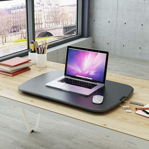 GoRiser Standing Desk Converter by FlexiSpot