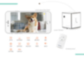Lovoom_petcamera_amazon_best dog camera | pet gadget you must have