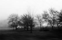Landscapes-10.jpg