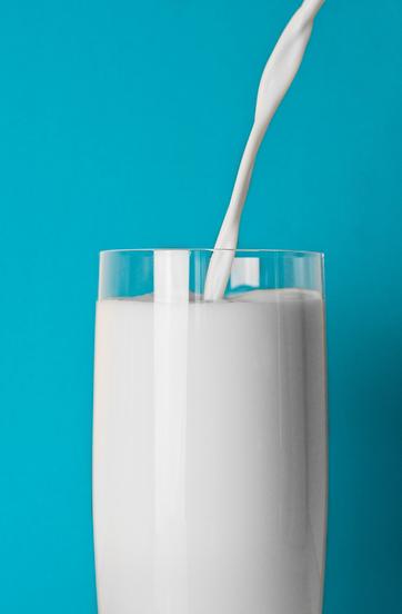latte asina (5).png