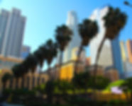 LA Skyline MM Shot.jpg