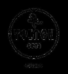 ypsilon-logo.png
