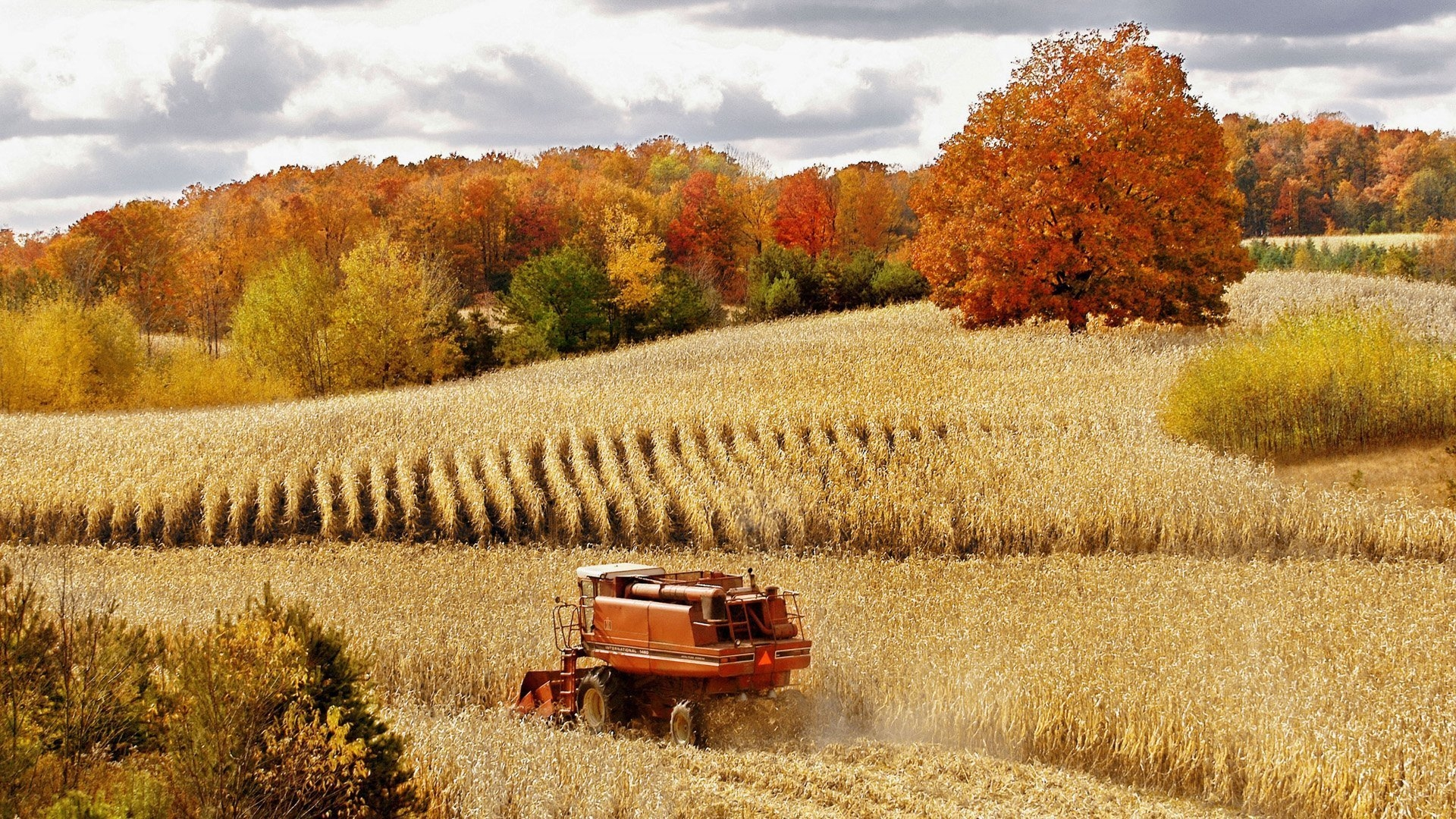 field_combine_crop_agriculture_cleaning_46746_1920x1080