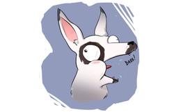 I'm a Dawg!!