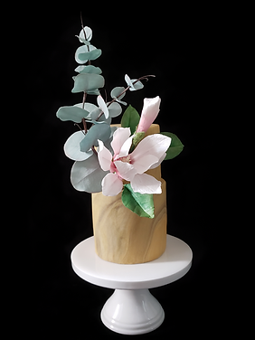 Magnolia & Eucalyptus.png