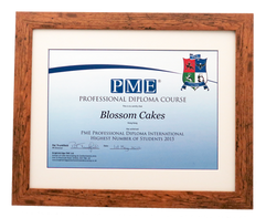 We have received award of PME Professional Diploma Highest Number of Students Taught Internationally in 2015
