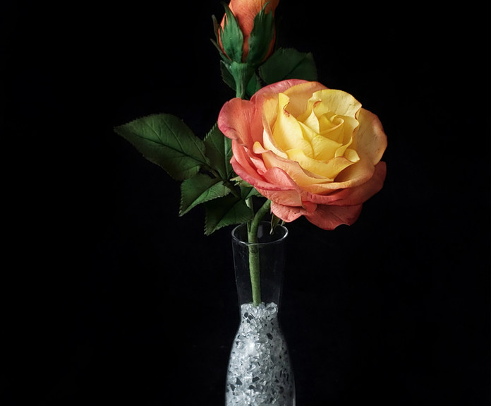 Double Delight Rose with closed bud & leaves