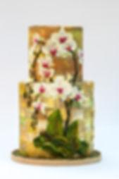 Claudia Prati Materika Orchids