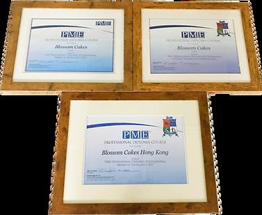 PME Award Certificate 2015