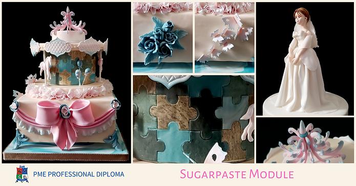 Sugarpaste Module 2020.png