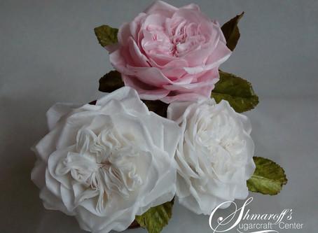 Petya Shmarova的超真實威化紙花
