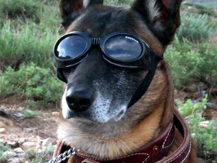Yahoo! FAILS, McDonald's Gives-up & Amazon AR Goggles?