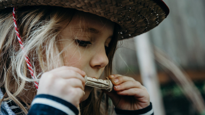 Nature Craft - A Simple Twig Whistle