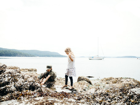 A Zero Waste Q&A with our Northwest Family of Four