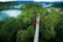 costarica-monteverde.jpg