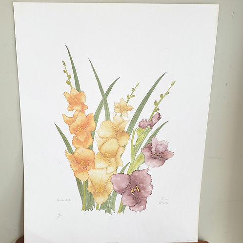 "Gladiolus Signed Artist Moran 198017.5""x25"" (small mark, left bottom)"