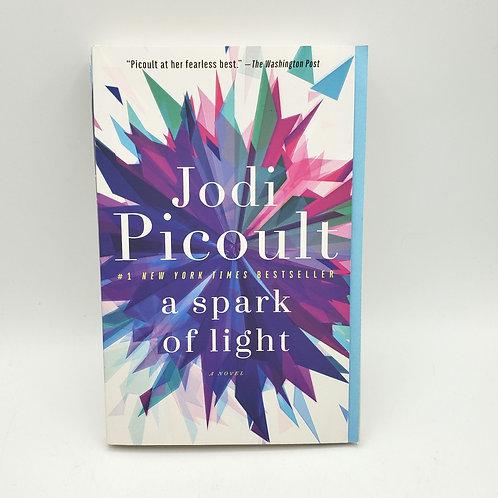 Jodi Picouli A Spark of Light Paperback 2018