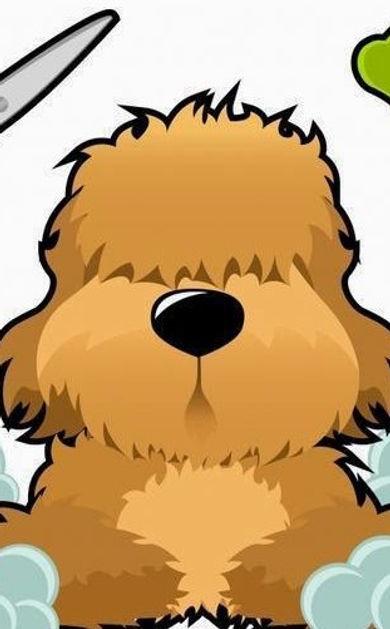 peluqueria-canina,2.jpeg_edited.jpg
