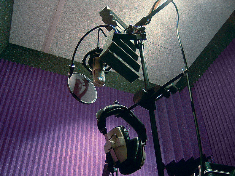 acoustic treatment the pass wedges sampl