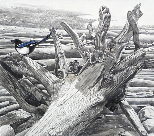 """Magpie and Driftwood"""