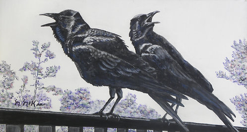 """Crows Call"""