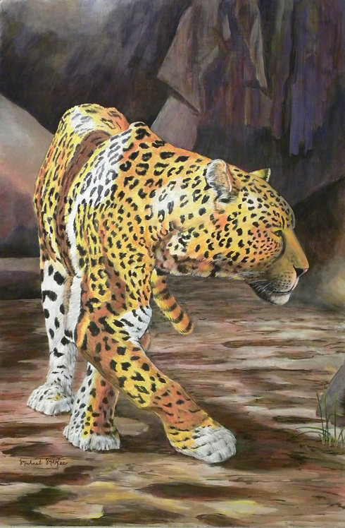 """Leopard Into the Light"""
