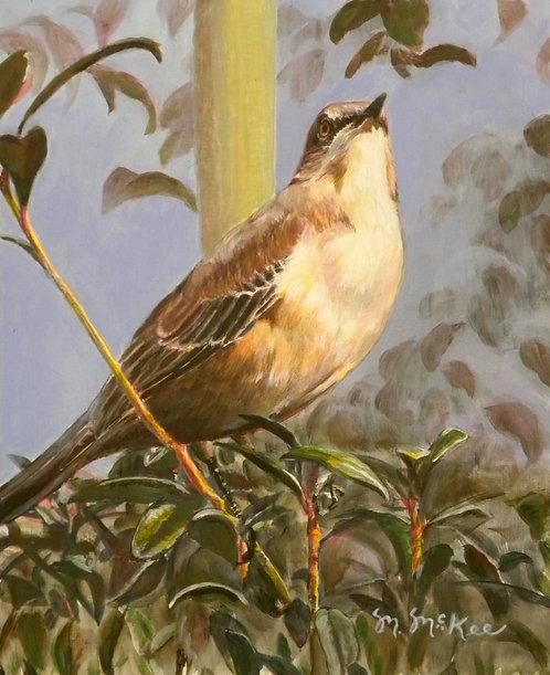 """King Mockingbird"""