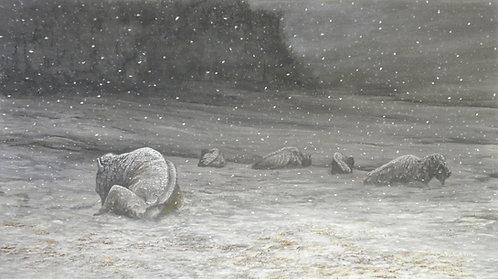 """The Last Snowfall"""