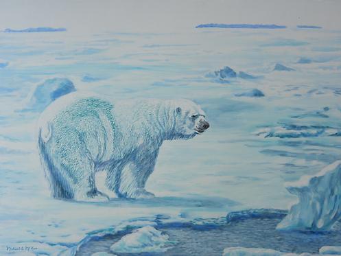 """""""Arctic Scene / Polar Bear"""""""