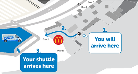Auckland International - Guide.png