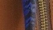 Blue Cockbird Pheasant Tail Feather x1