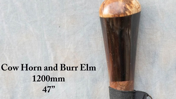 Stick 14 - Cow horn and burr elm