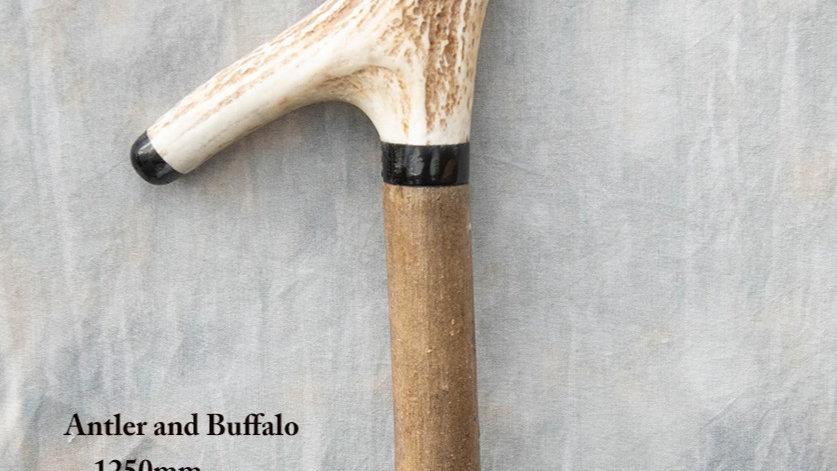 Stick 23 - Antler and buffalo