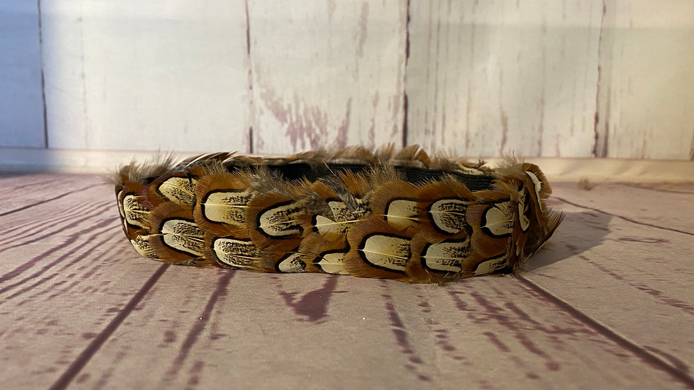 A feather Hatband