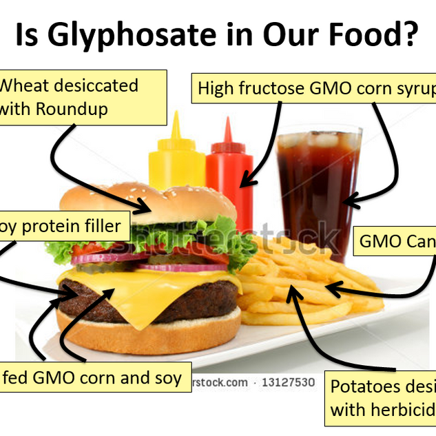How-we-eat-glyphosate.png