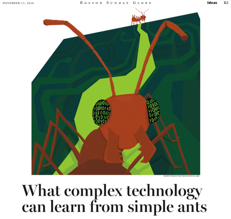 What Complex Technology Can Learn from Simple Ants