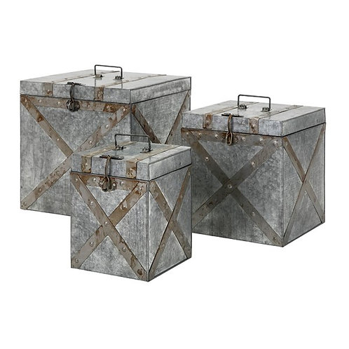 Parry Galvanized Trunks