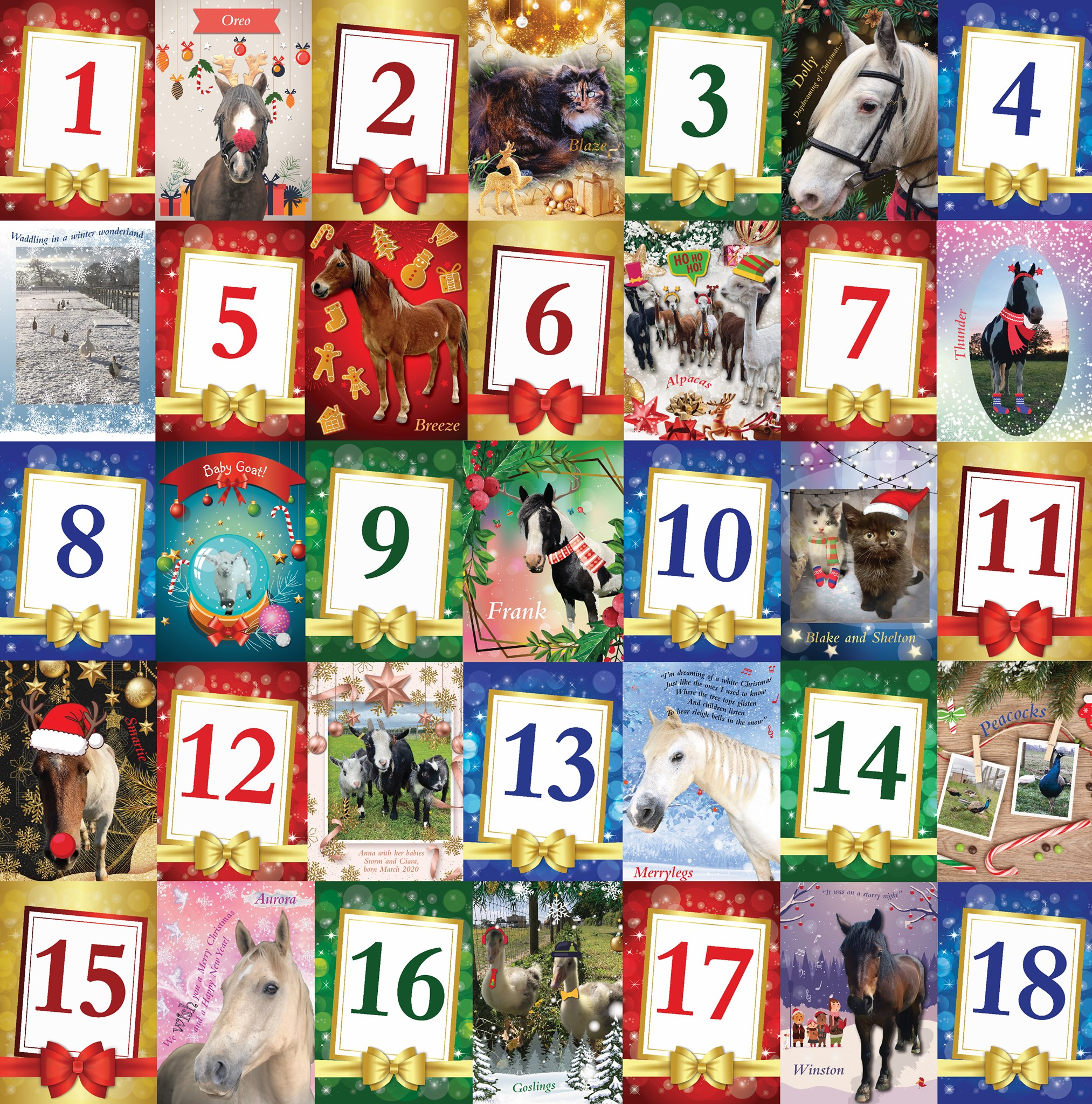 Freedom Advent calendar