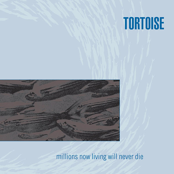 Tortoise Millions Now Living Will Never