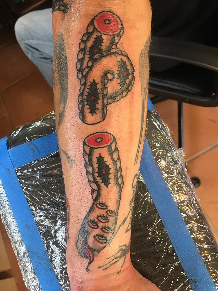 tattoo snake sections.jpg